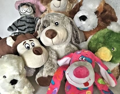 Picture of Dog Play Toy